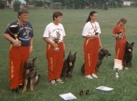 Deutscher Schäfer Hundeschau