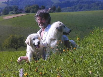 Pyrenäenberghund Familie