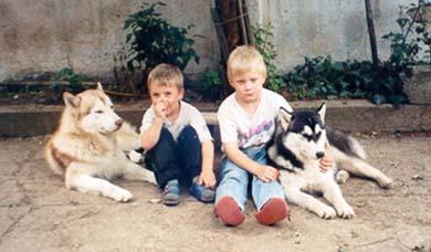Siberian Husky Familie
