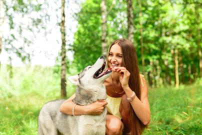 Der richtige Hund für mich