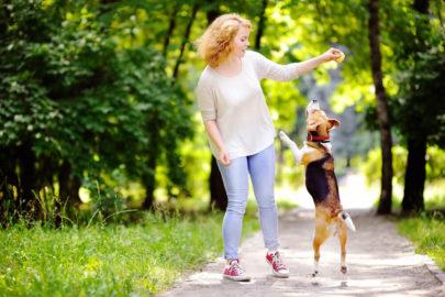 Spaß mit dem Hund